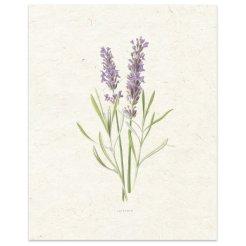 Lavender+Painting+Print.jpg